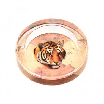 Пепелник тигър